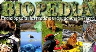 bio enciclopedia